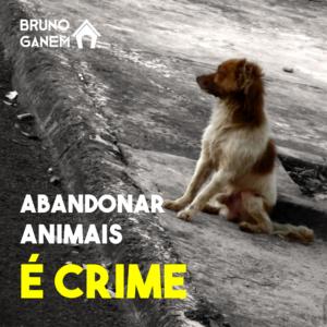 Campanhas Bruno Ganem - Abandonar Animais é Crime