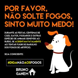 Diga Não Aos Fogos - Bruno Ganem - Campanha