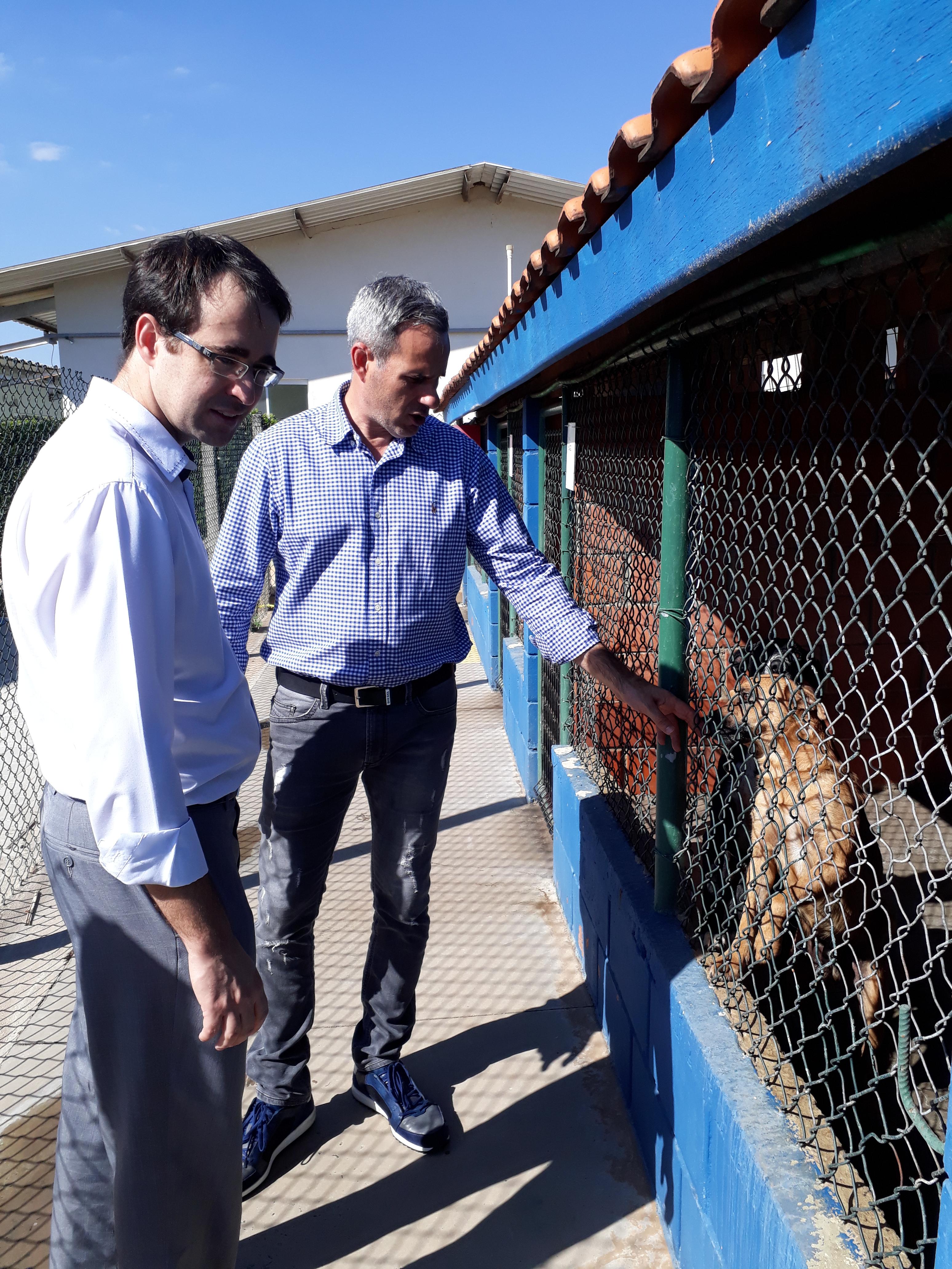 Ganem visita ONG Cães para Adoção e pede ajuda/ Foto: Equipe Bruno Ganem