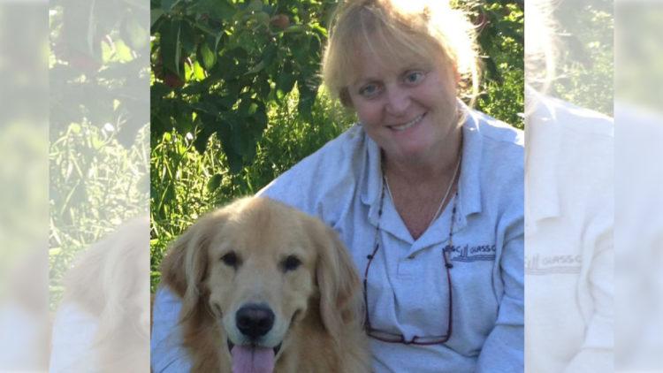 Mulher joga o próprio cachorro em lago e assiste ao seu afogamento/ Imagem: Reprodução Internet