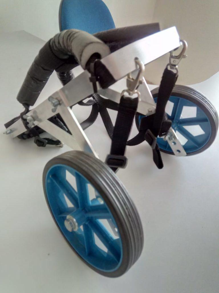 Cadeira de rodas para cachorro também estava entre as doações da Campanha de Agasalho/ Imagem: Equipe Bruno Ganem
